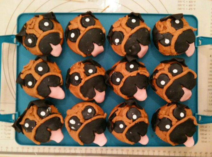 Mops cupcakes / pug cupcakes