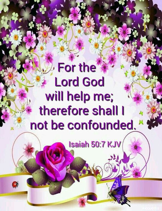 Isaiah 50:7 KJV  For the Lord God will help me; therefore shall I not be confounded: therefore have I set my face like a flint, and I know that I shall not be ashamed.