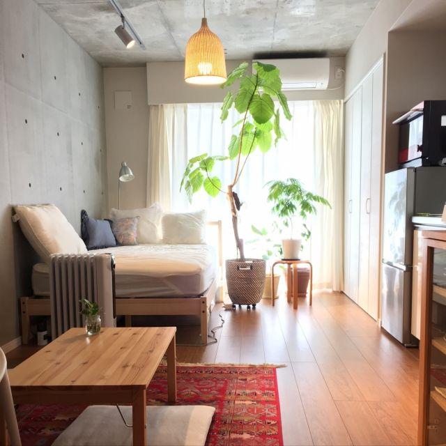 mashumaroさんの、部屋全体,観葉植物,照明,ワンルーム,ラグ,一人暮らし,ペンダントライト,土間,鉢カバー,コンクリート打ちっ放し,植物のある暮らし,のお部屋写真