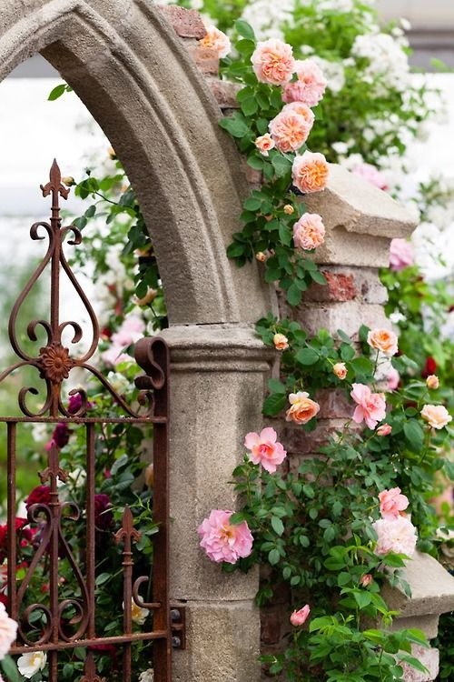 I love the combination of stone, iron, and the roses.  I also appreciate how the patina of the iron complements the roses. The gardner who designed this is a wizard. P