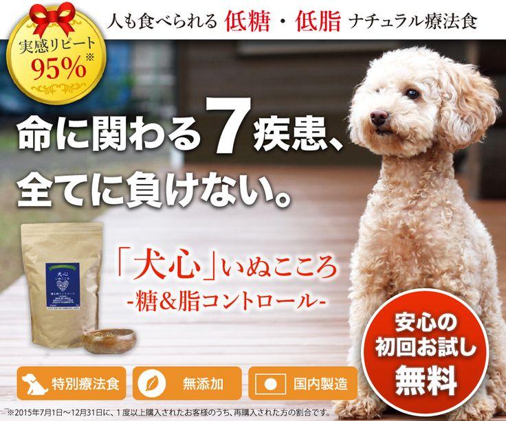 犬の糖尿病・膵炎・クッシング症候群・甲状腺機能低下症・高脂血症 ・脂質代謝異常症・メタボ(肥満)をケアする食事療法食