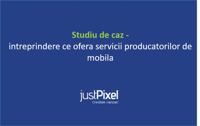 Studiu de caz – intreprinderi ce ofera servicii producatorilor de mobila