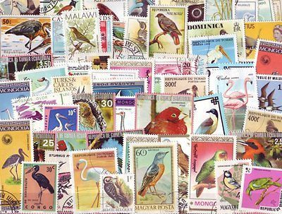 100 Different Birds on Stamps Thematics - Used