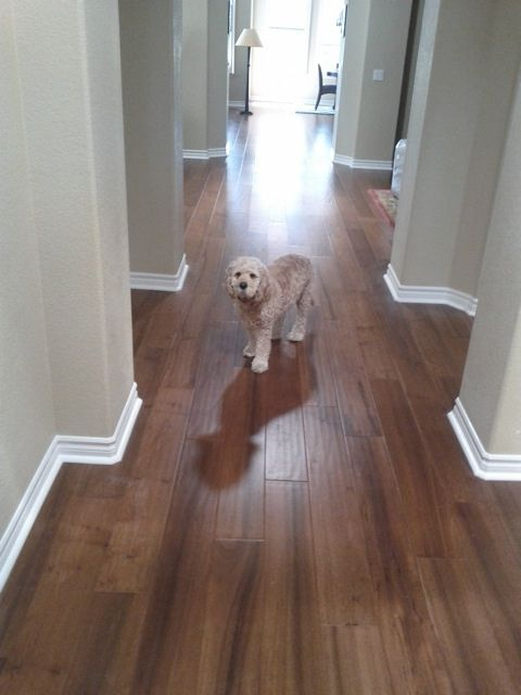 17 best ideas about floor colors on pinterest wood floor for Can you paint engineered wood floors