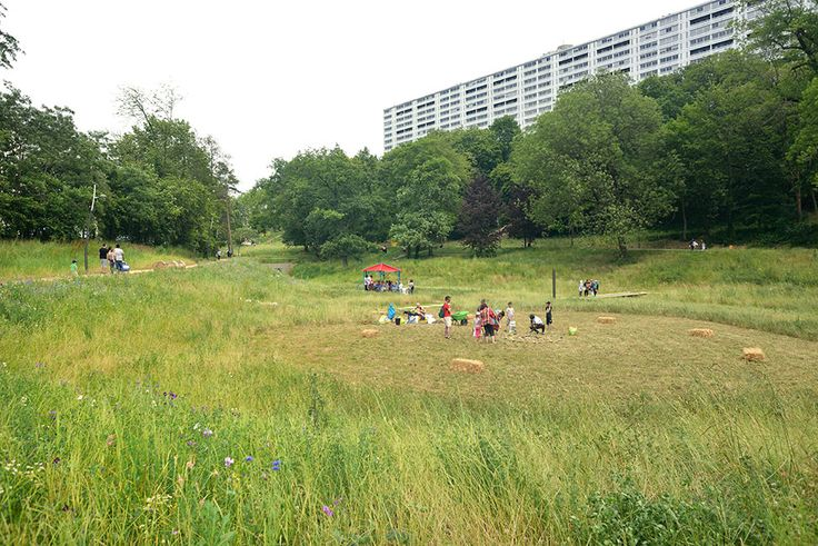 Vallon Park by Ilex Landscape Architecture Definition of spaces throught the use of overgrown grass and mowed one