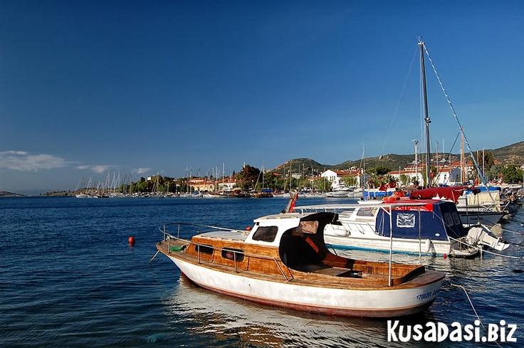 Boats, Eski Foca.