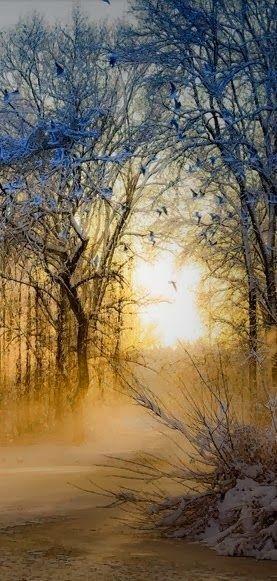 Winter sunrise in Bilzen, Belgium