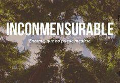 Las 25 Palabras más Bonitas del Idioma Español