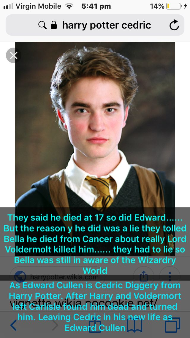 Edward Cedric Harry Potter Vs Twilight Fred And George Weasley Cedric Diggory