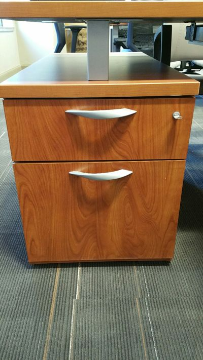 Cherokee County School District - Dr. Frank R. Petruzielo Educational Services Complex (Gaffney, SC) WaveWorks Filing + Storage Products in a private office  #NationalOffice