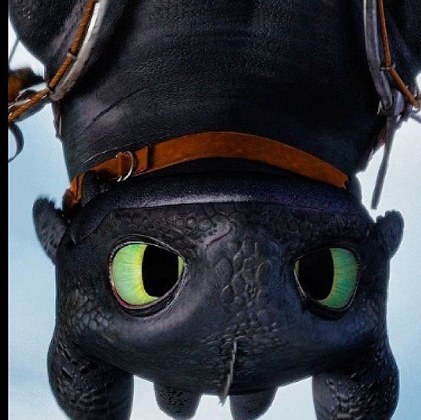 Toothless, the reason I wish dragons were still alive.
