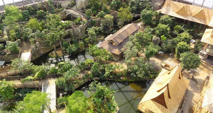 Gondwanaland at Leipzig Zoo in Germany - an incredible zoo with a focus on natural enclosures.