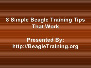 8 Simple Beagle Training Tips That Work