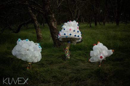 The Milkcrate Mushrooms at Regrowth Festival 2015