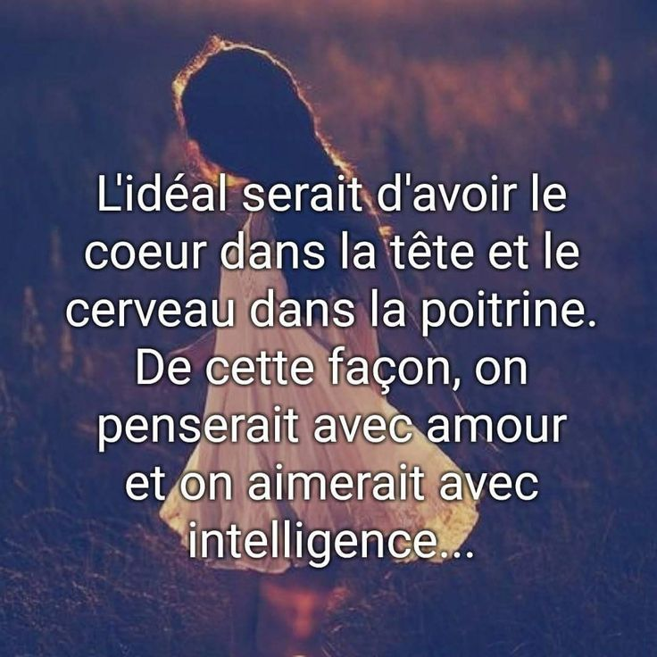 Citation intelligence et amour