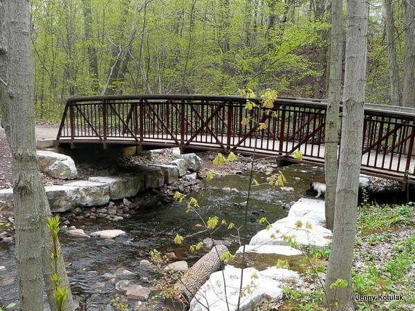 Oakville ravines and forests, Oakville trails, Oakville Parks & Recreation, Jenny Kotulak photo