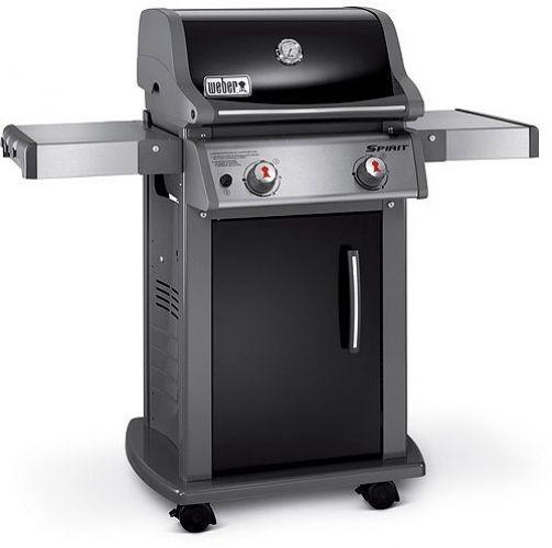 Weber 2-Burner LP Gas Grill BBQ Backyard Patio Stainless ...