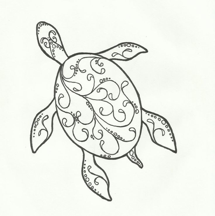 Turtle Line Drawing Tattoo : Best images about sea turtles on pinterest drawing