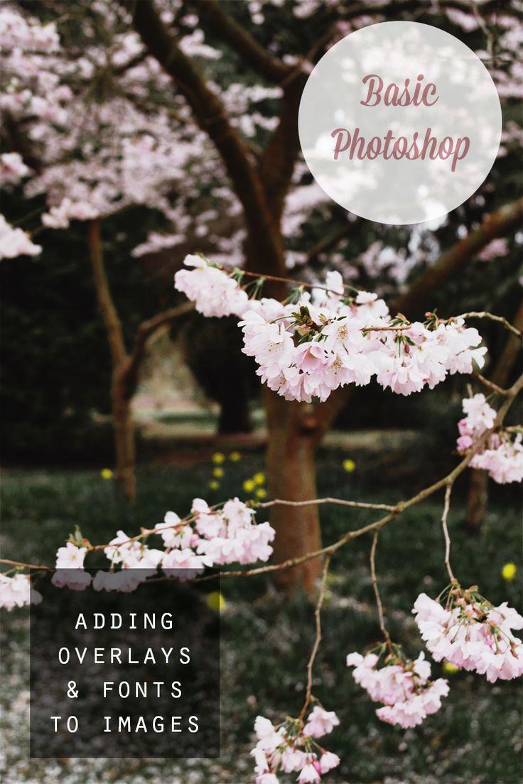 Basic Photoshop: Adding overlays and fonts to photos