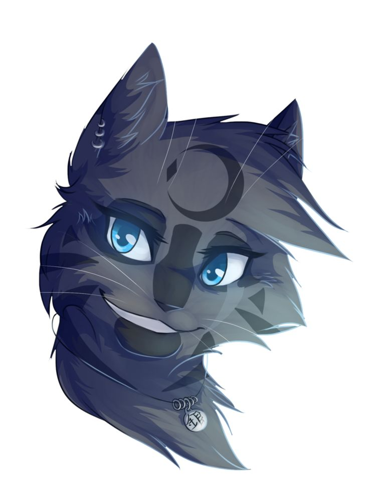 Silvermoon she cat. She is a very beautiful, skilled, powerful, smart, loyal, funny, calm, cat. She has a necklace that Starclan gave her when she was only a kit. And she always wears it. She is flirty but doesn't have anyone on her mind yet, but she has a slight crush on Foxwhisker. (Me)