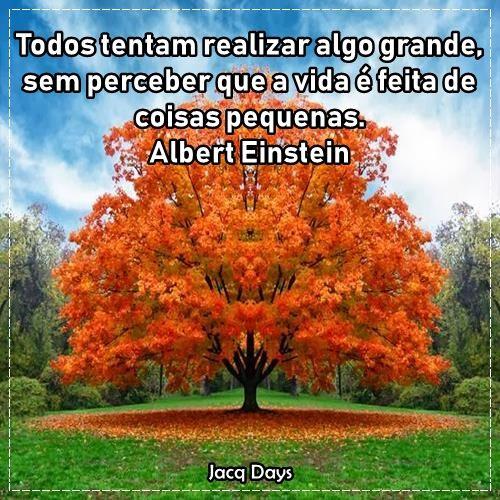 Todos tentam realizar algo grande, sem perceber que a vida é feita de coisas pequenas. Albert Einstein