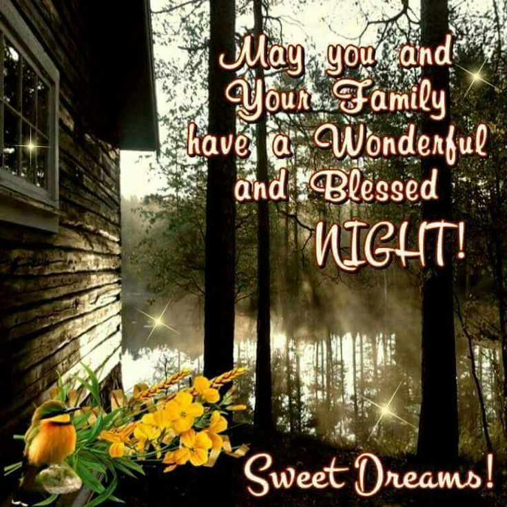 73 Best Occasions Get Well Soon Images On Pinterest