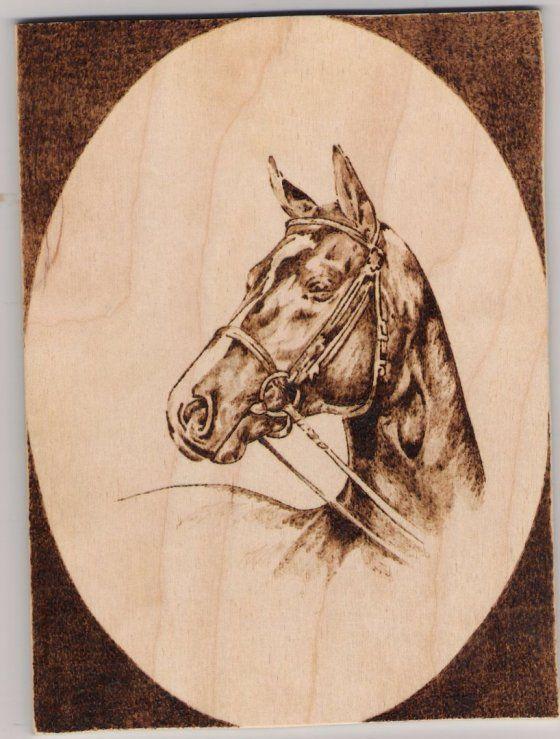Égetett ló portré