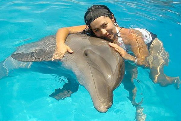 """Cancun """"Swim with the Dolphins"""""""