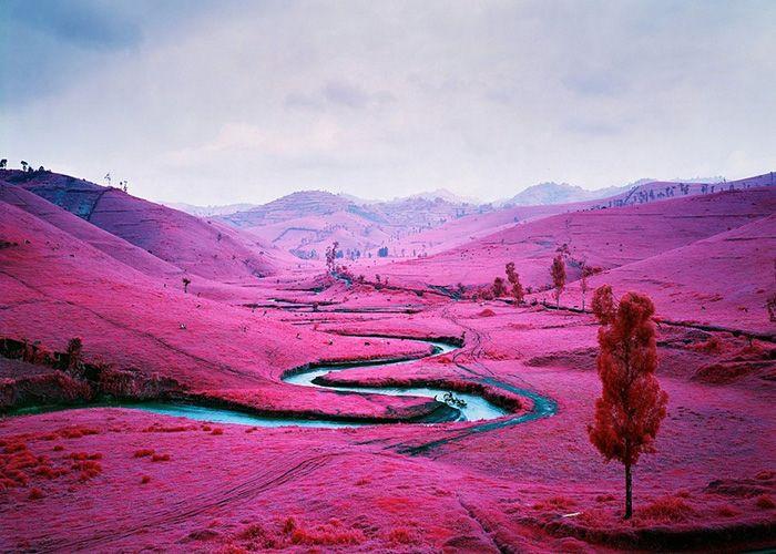 Infrared Landscapes by Richard Mosse