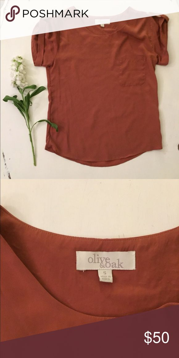 NWOT Olive & Oak professional blouse Button sleeves, pockets, and crewneck collar. Burnt orange short sleeve top from UO Urban Outfitters Tops Tees - Short Sleeve