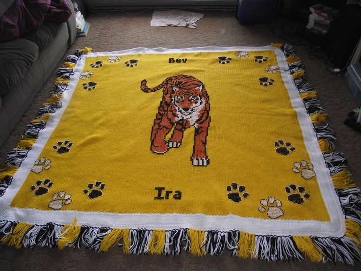 tiger with 20 paws (bev and Ira)