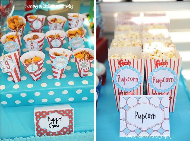 Top Ten - Dog-Themed Birthday Party Decorations | Match Made on Hudson