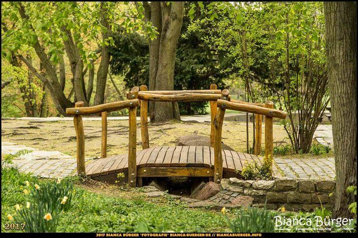 Humboldthain (April 2017) #Humboldthain #Brunnenviertel #Berlin #Deutschland #Germany #biancabuergerphotography #igersgermany #igersberlin #IG_Deutschland #IG_berlincity #ig_germany #shootcamp #pickmotion #berlinbreeze #diewocheaufinstagram #berlingram #visit_berlin #Wedding #canon #canondeutschland #EOS5DMarkIII #5Diii #Park #landscape #Landschaft