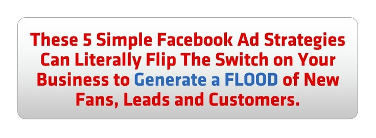 Facebook Ad Insider by Amy Porterfield.