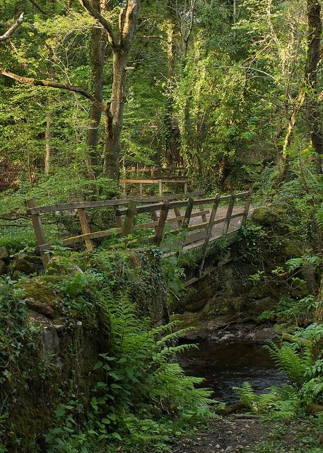 Fatherford Footbridge, Dartmoor National Park, U.K. Photo:  M.Wolstenholme, via Flickr