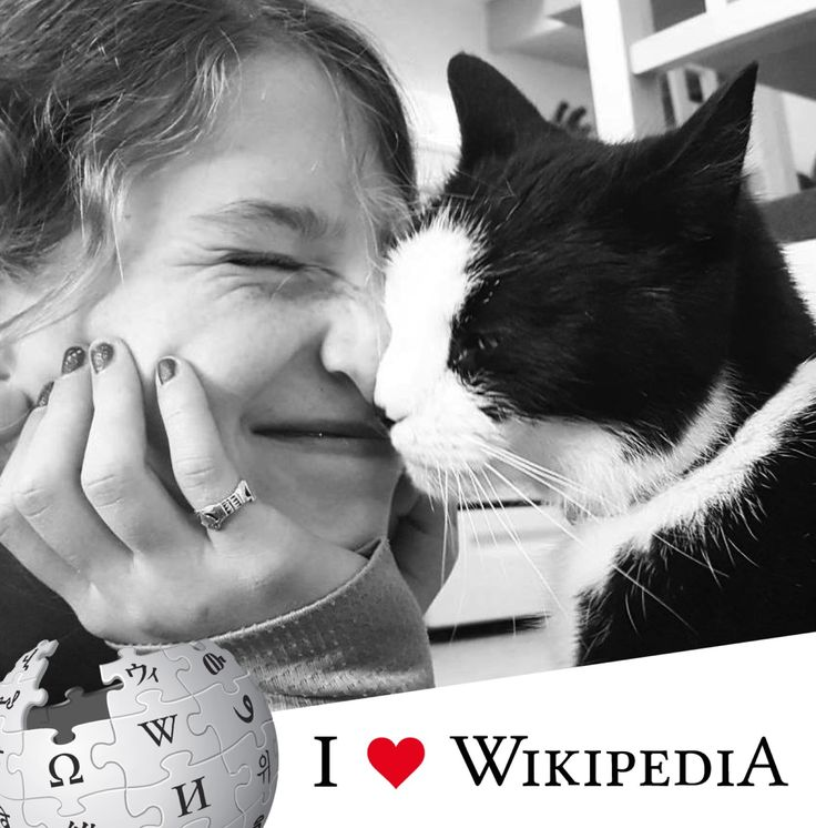 Get your I Love Wikipedia profile picture frame, and submit your pic for this board! https://www.facebook.com/wikipedia/photos/a.10151957291753346.1073741826.33138223345/10154641818953346/?type=3&theater