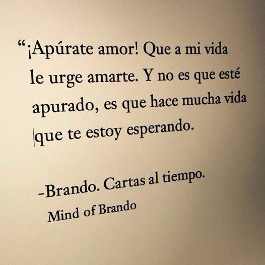 Bonitas #palabrasdeamor de Mind of Brando (http://www.mindofbrando.com/) ¡No pierdas más el tiempo! Dile que la amas con una #carta. www.palabrasalacarta.com
