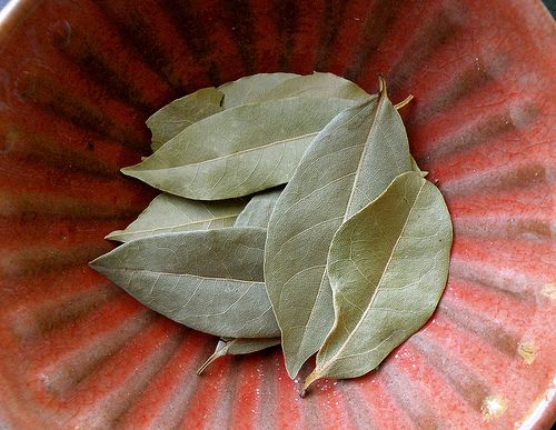 A Bay Leaf... Keep bugs at bay in your dry goods ... - photo#37