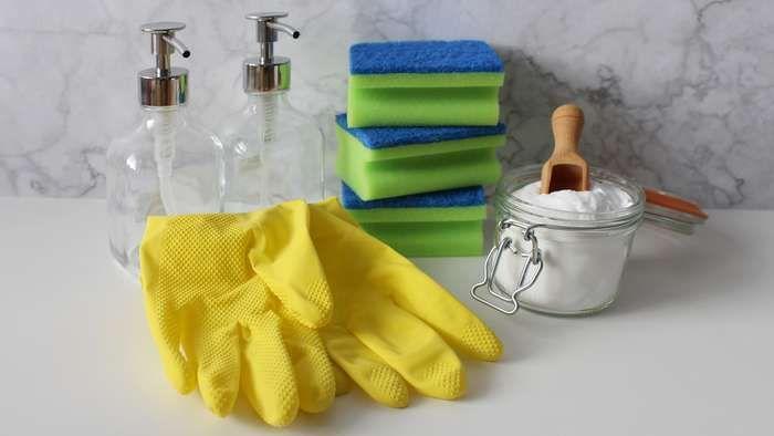 Zum Fruhsjahrputz Gehoren Nicht Nur Fenster Boden Und Co Auch Ihr Sofa Kann Eine Grundreinigung Gut In 2020 Reinigungstipps Naturliche Reinigung Aufraumen Und Putzen
