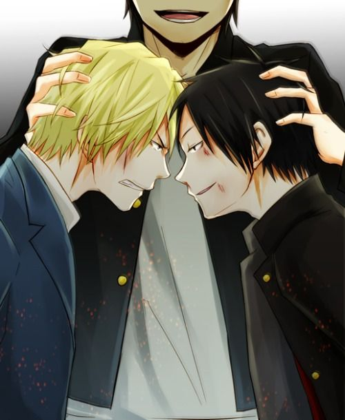 Shizuo x Izaya... Dotachin as Shiper? wow, Erika will be happy~