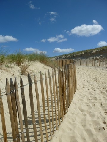 Landes (France), vers la plage !