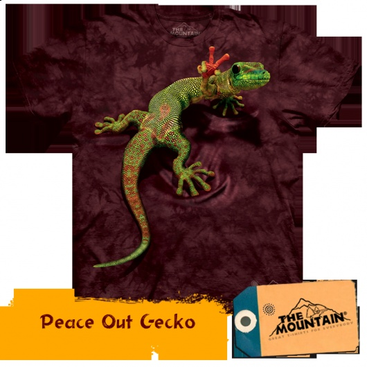 Peace Out Gecko