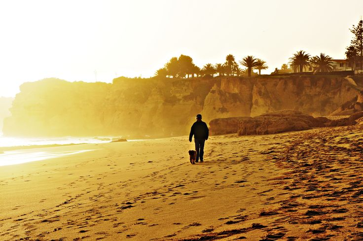 Прогулка по пляжу - null