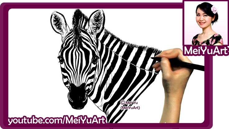 Art Challenge - Realistic Zebra Drawing - Drawing Popular Animals by Mei...