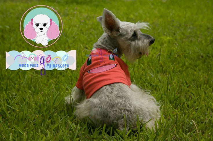 Mascota: Cosette Talla: 3  Estampado y color: Charmander (coral).  Fotografía: Tatiana Rodriguez Diseño: América García