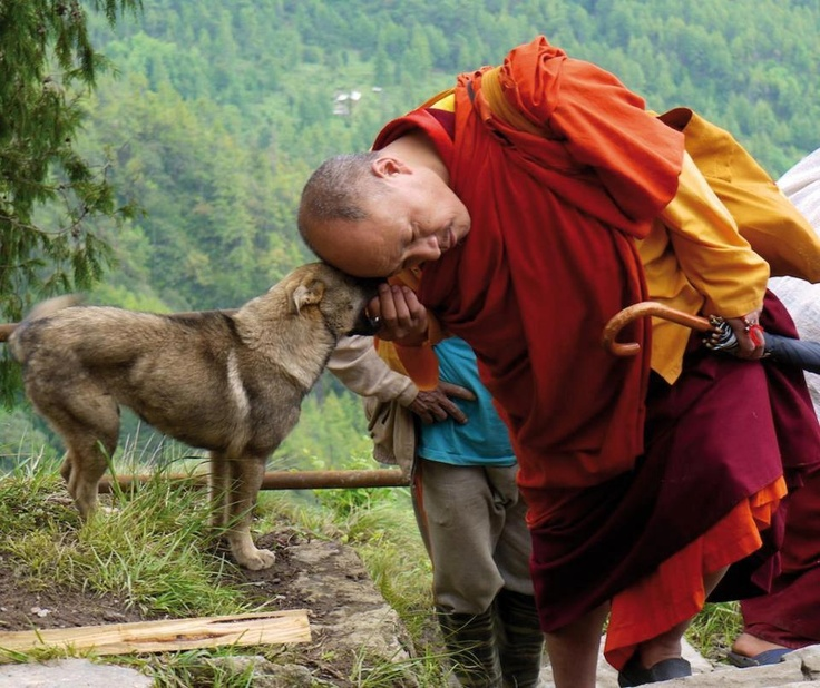A compassionate moment shared between a monk and dog. I believe that compassion, love, and friendship can exist outside of just humanity. It's important to care for and respect all other creatures on this earth and the monk shows this through his gentle touch and the tenderness of laying his head against the dogs head.   -Elizabeth R.