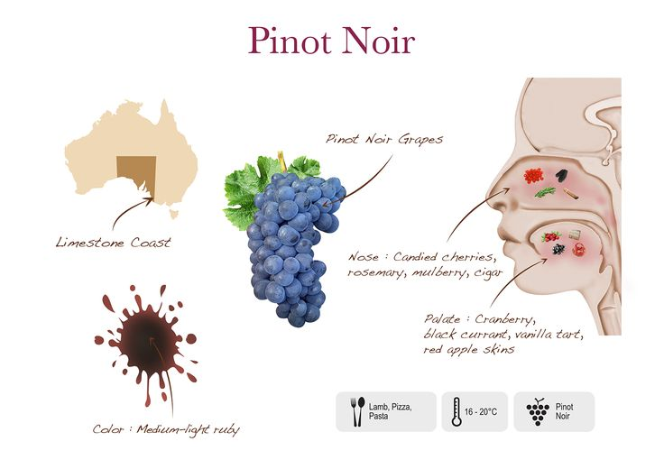 Pinot Noir visual presentation by Two Islands