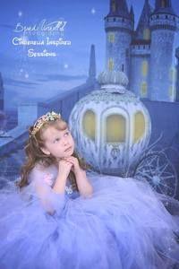 Fab Cloth Cinderella Backdrop Castle & Pumpkin Carriage