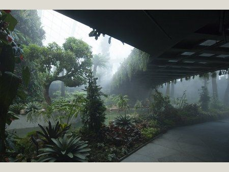 World Buildings Directory - Cooled Conservatories at Gardens by the Bay