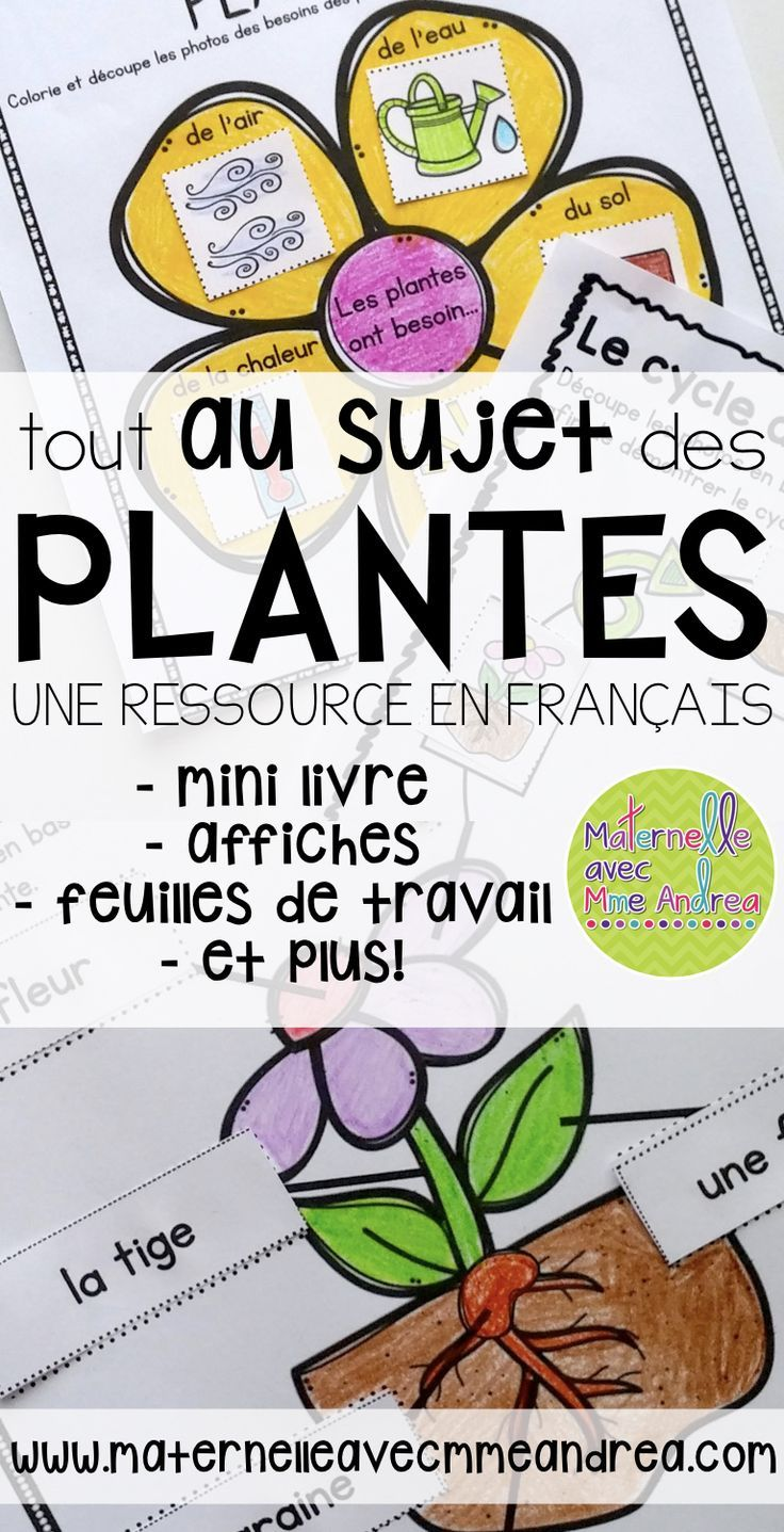 Teaching about plants in French this year? Why not use this package of pre-made worksheets, writing paper, activity ideas and a mini book to give you a hand? Everything you need to supplement your teaching about plant parts, the life cycle of a plant, and more! Tout en français!